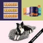 15 Best Black Friday Deals for Pet Owners