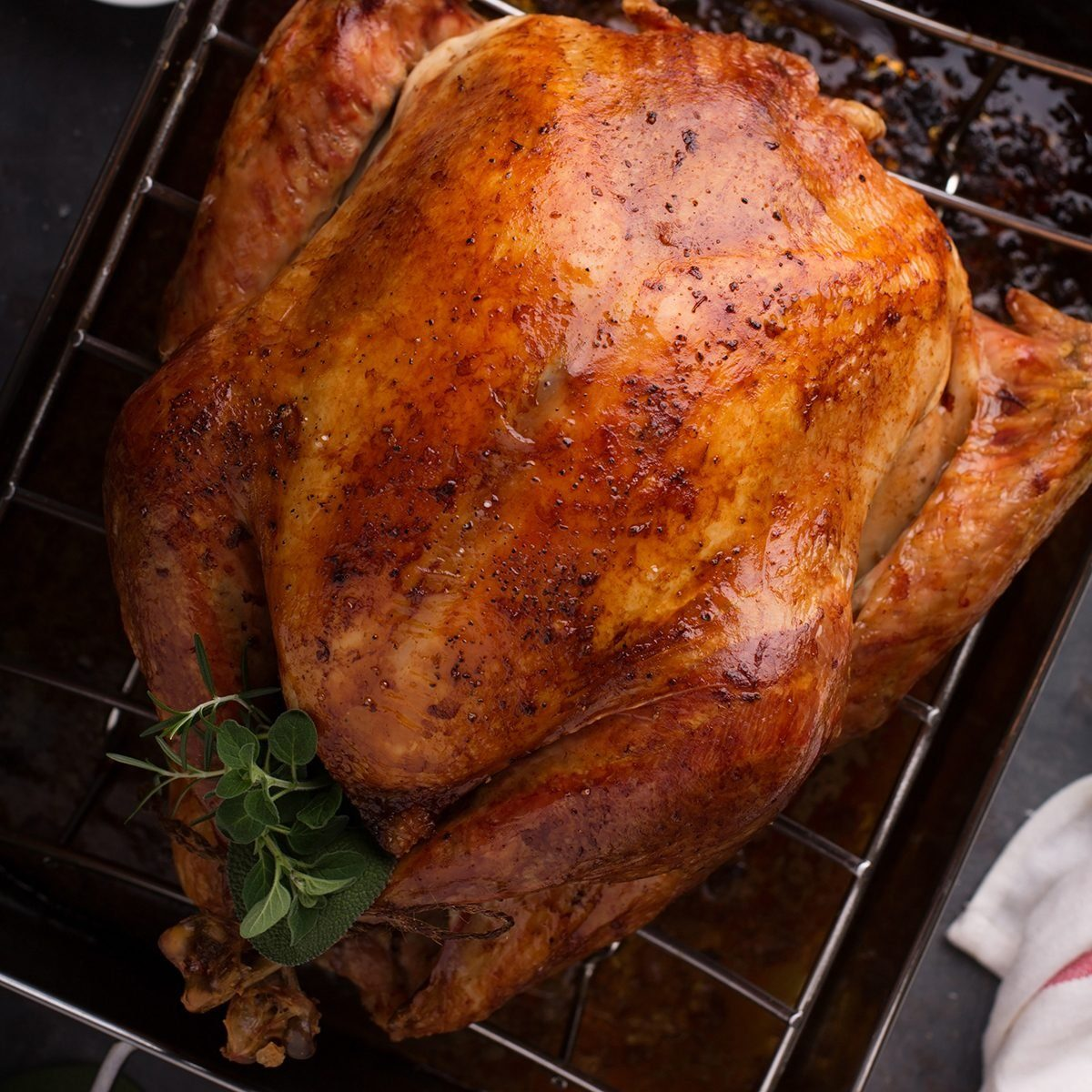 Cooked turkey for Thanksgiving or Christmas in a roasting pan ready for carving; Shutterstock ID 737627662; Job (TFH, TOH, RD, BNB, CWM, CM): TOH