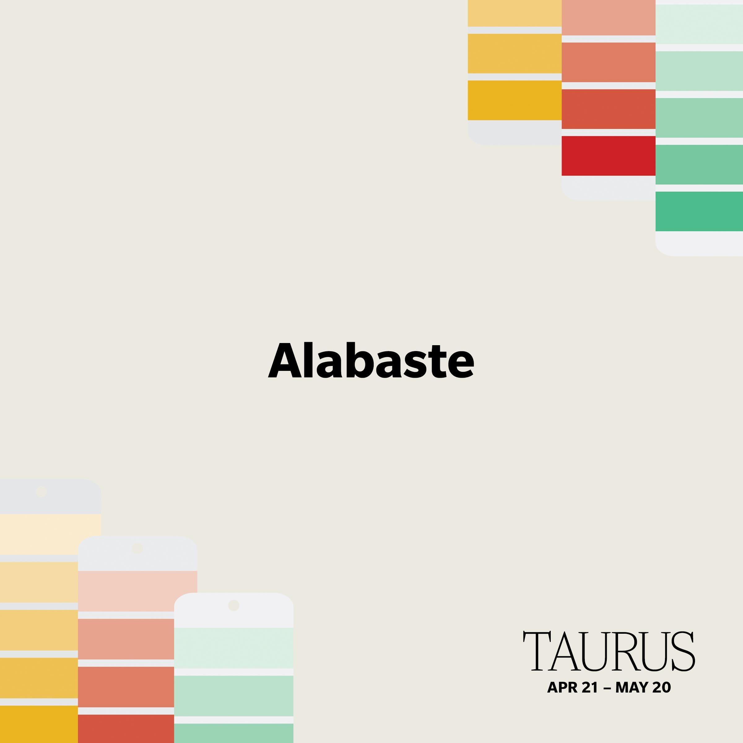 taurus paint