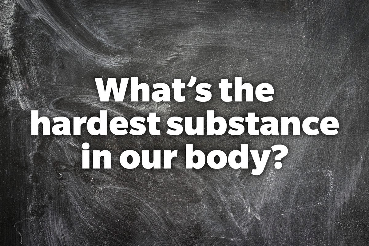 What's the hardest substance in our body?