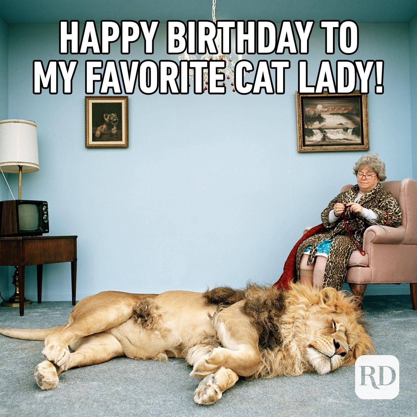 Happy Birthday to my favorite cat lady!