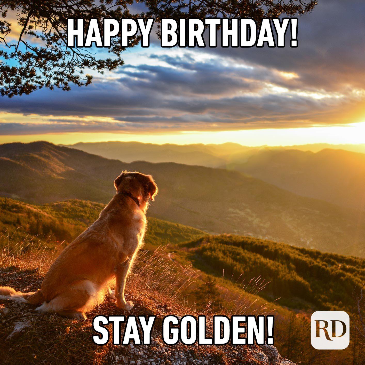 Happy Birthday! Stay golden!