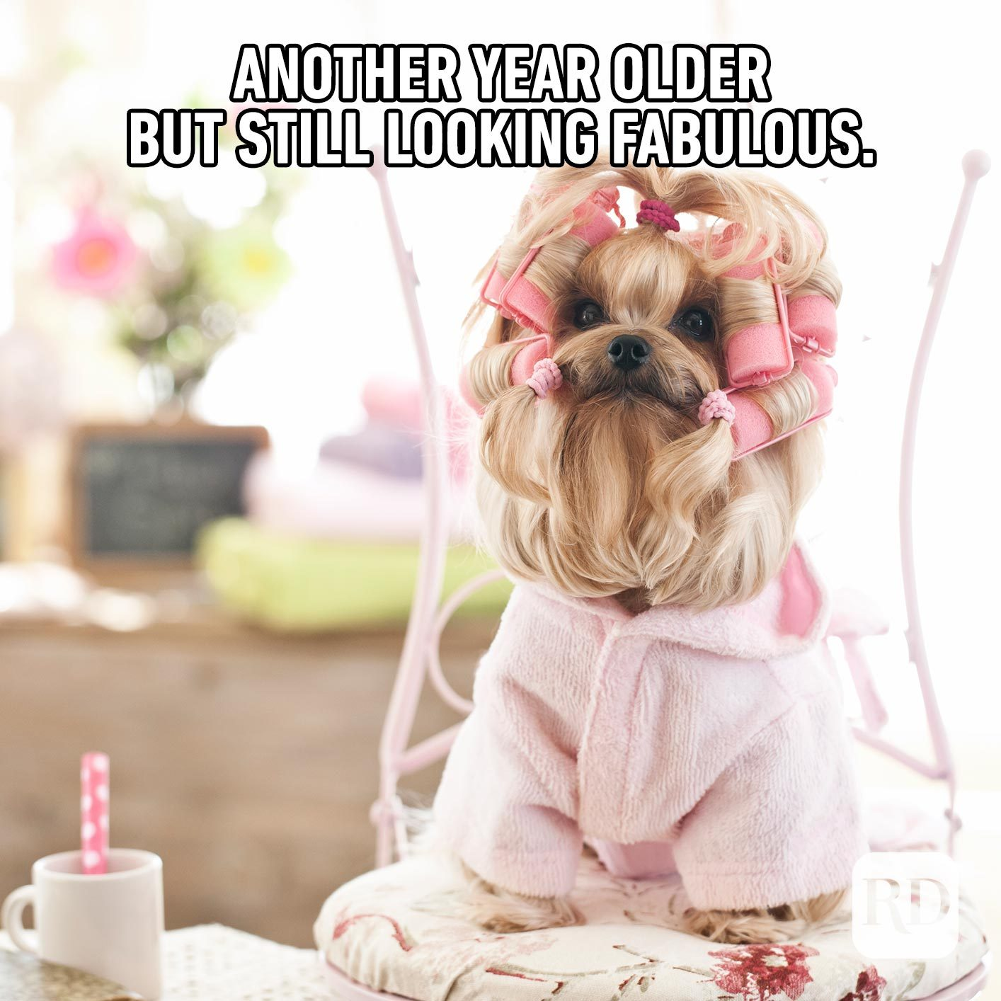 Another year older, but still looking fabulous.