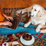 8 Signs You're Not Showing Your Dog Enough Affection