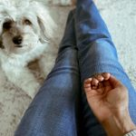 13 Things to Know Before Giving CBD to Your Pet