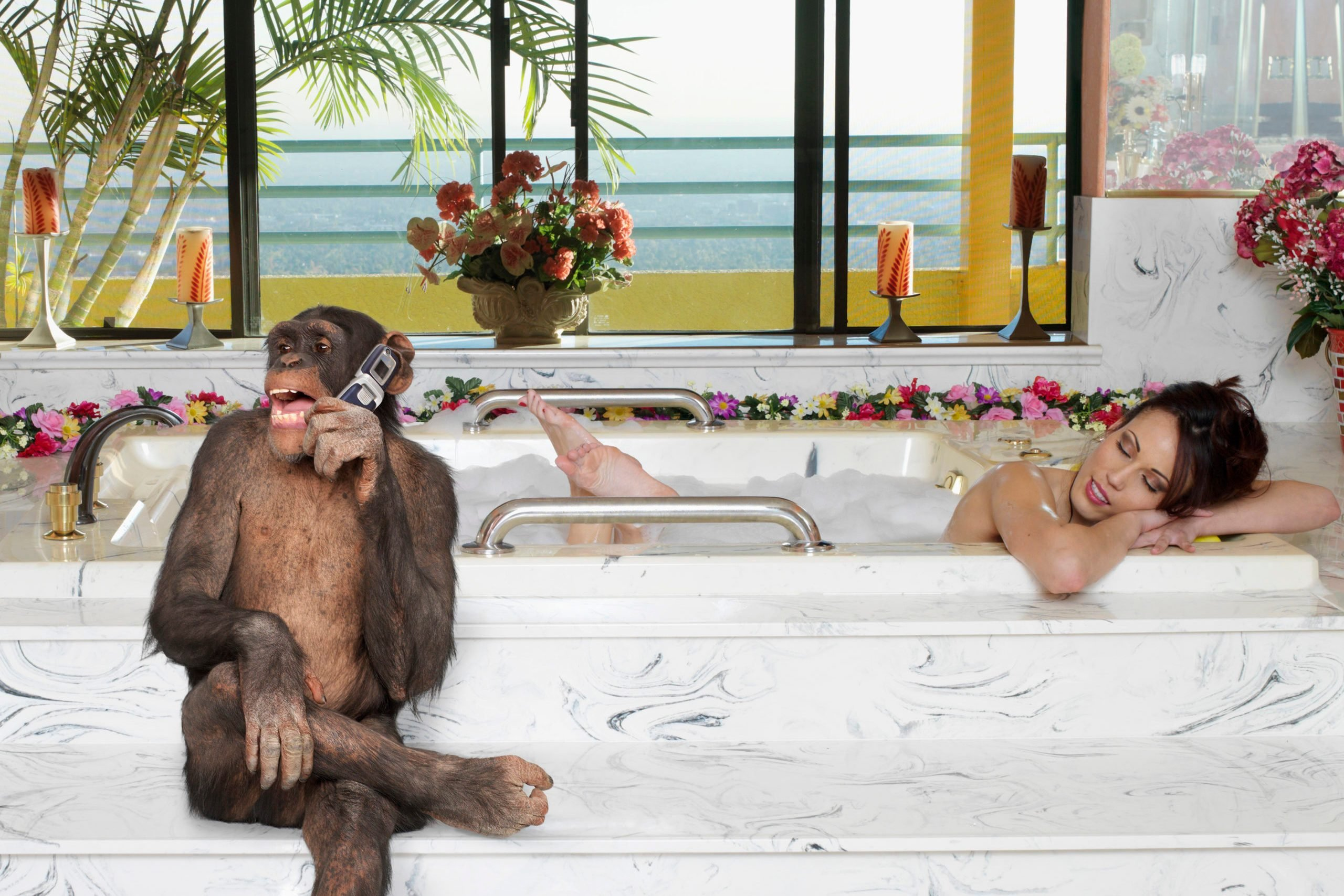 Monkey talking on cell phone while woman takes a bath