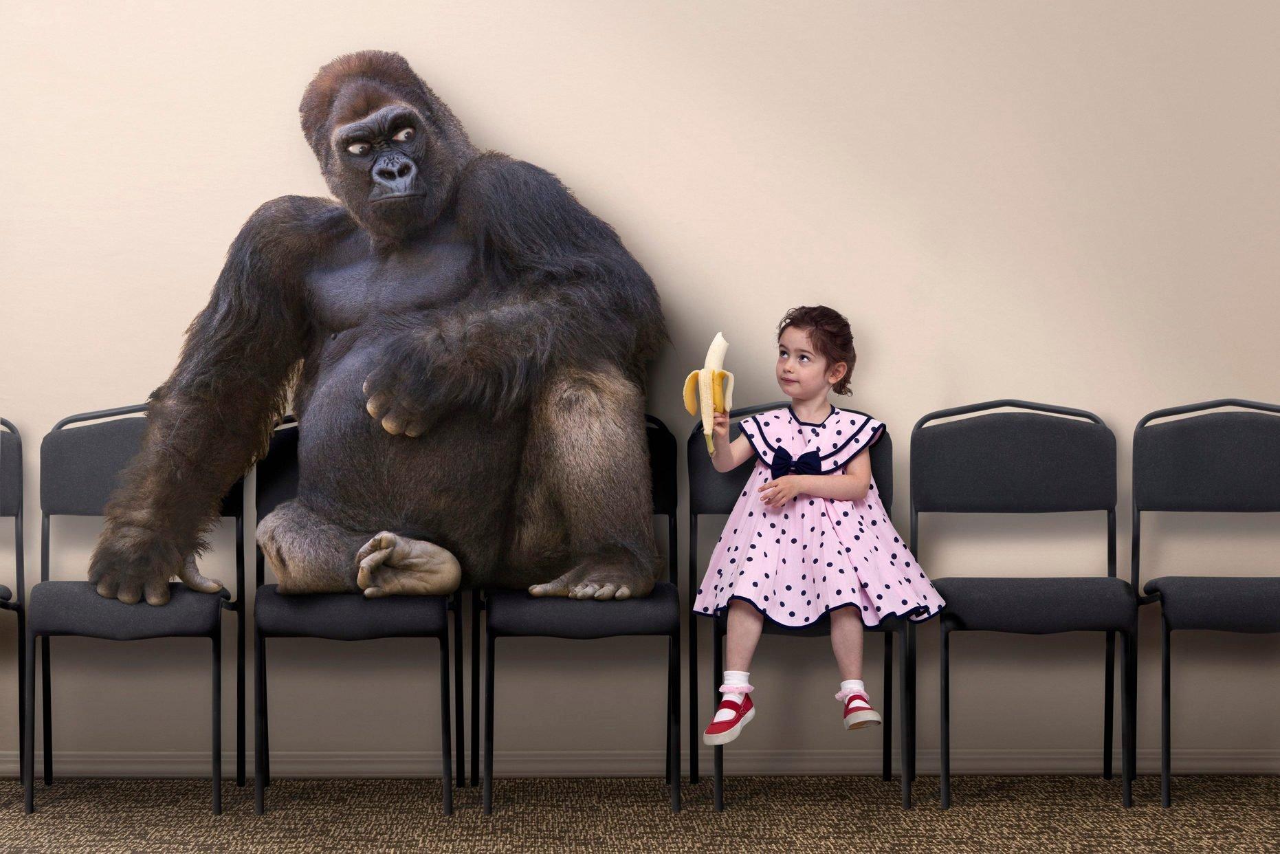 Caucasian girl offering banana to gorilla