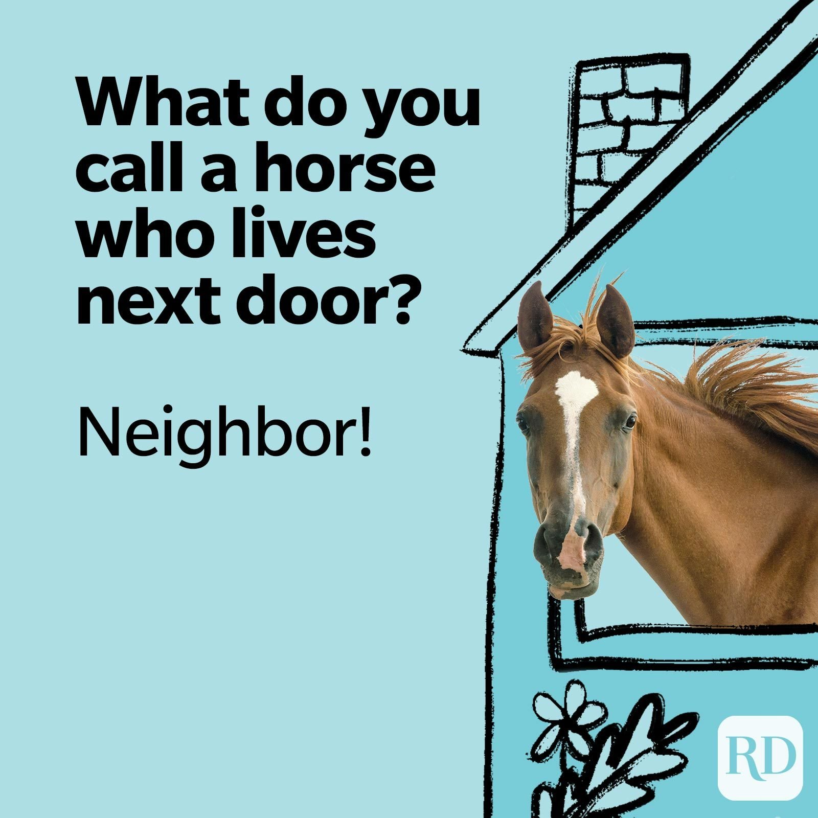 What do you call a horse that lives next door? Neighbor!