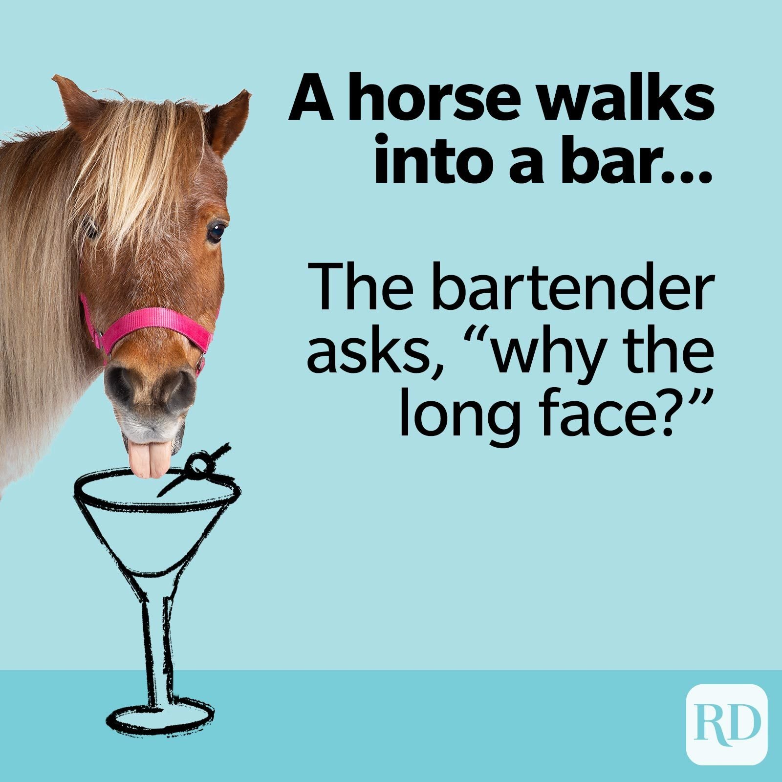 """8. Another horse walks into a bar… The bartender asks, """"why the long face?"""""""