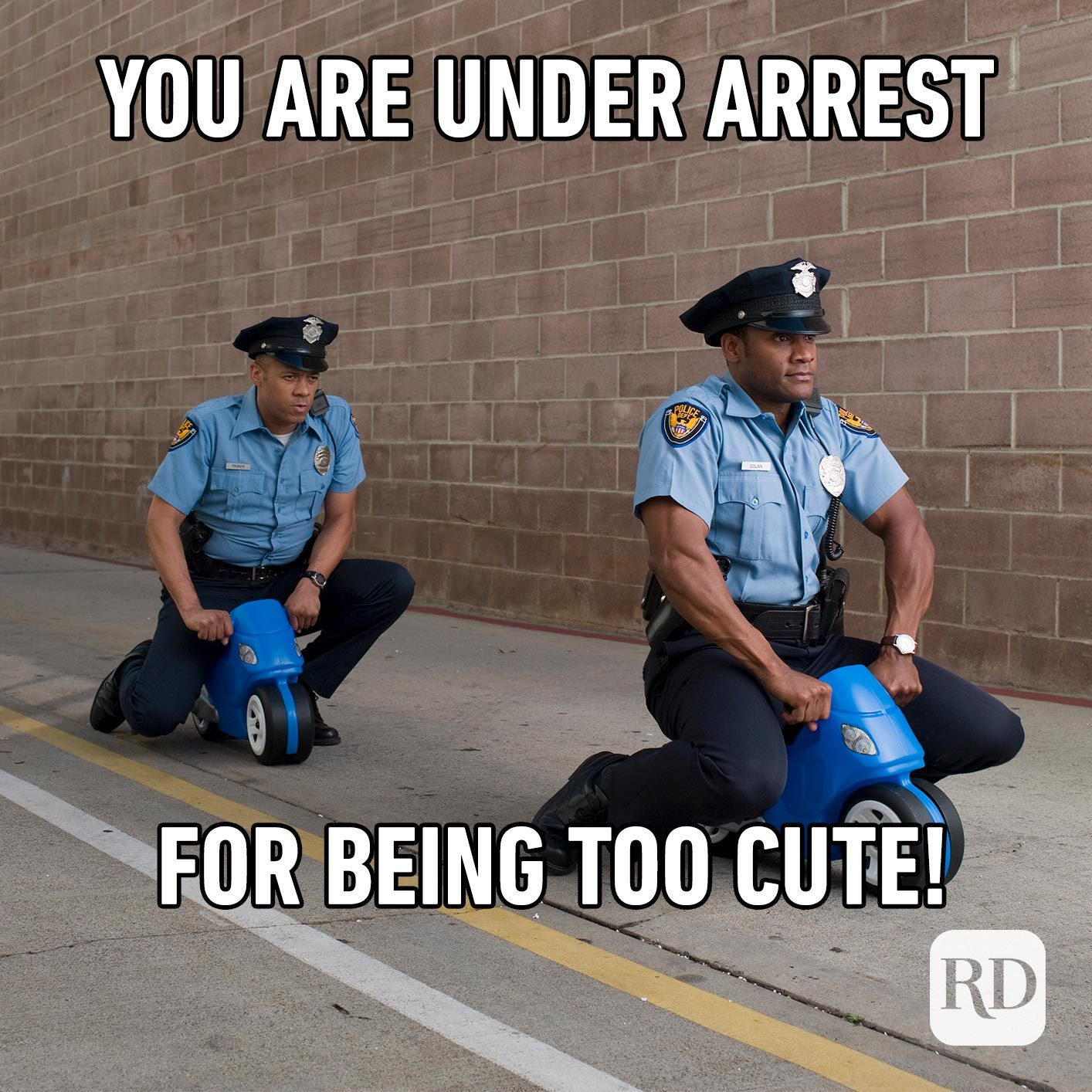 Two police officers. Meme text: You are under arrest for being too cute!