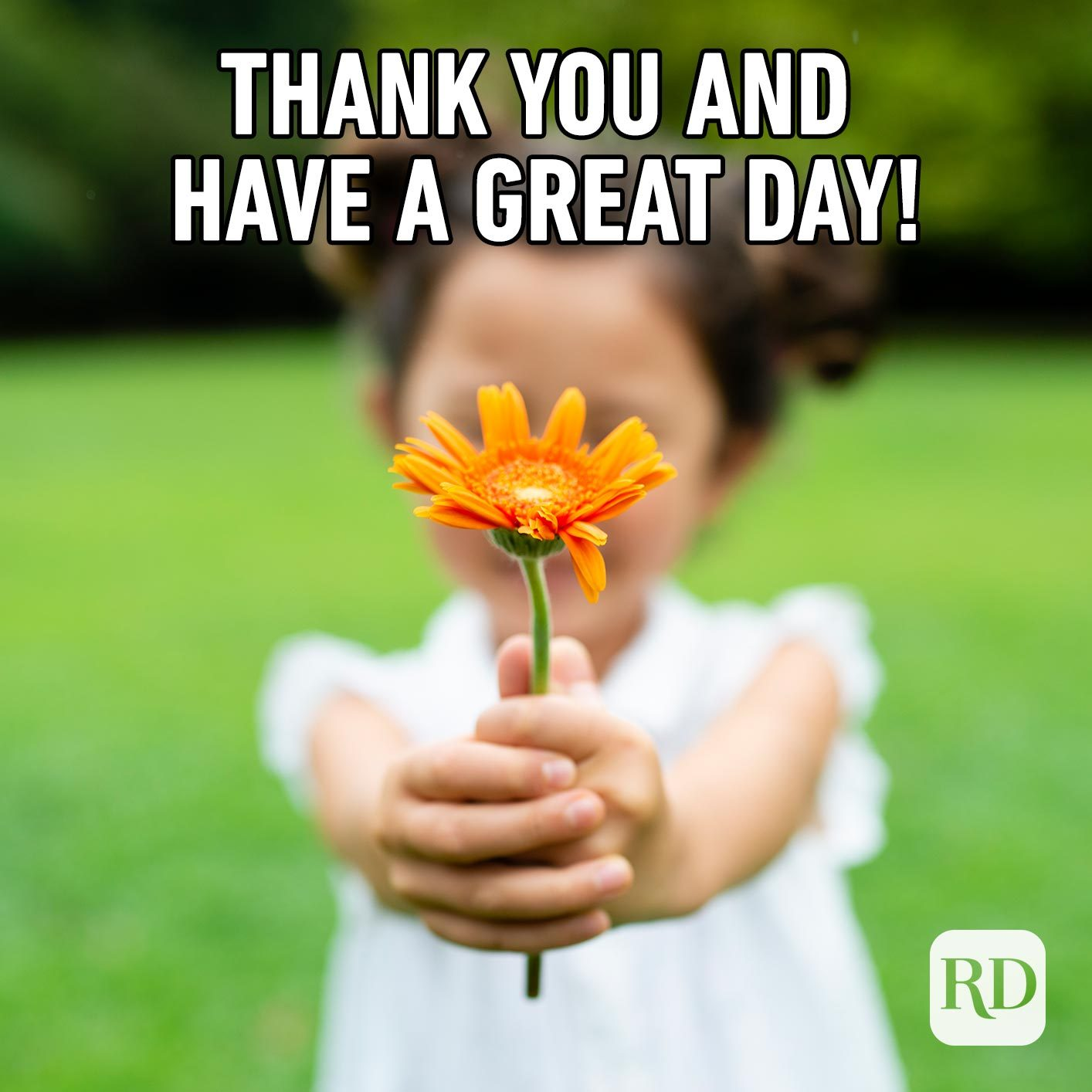 Girl offering a flower to the camera. Meme text: Thank you and have a great day!