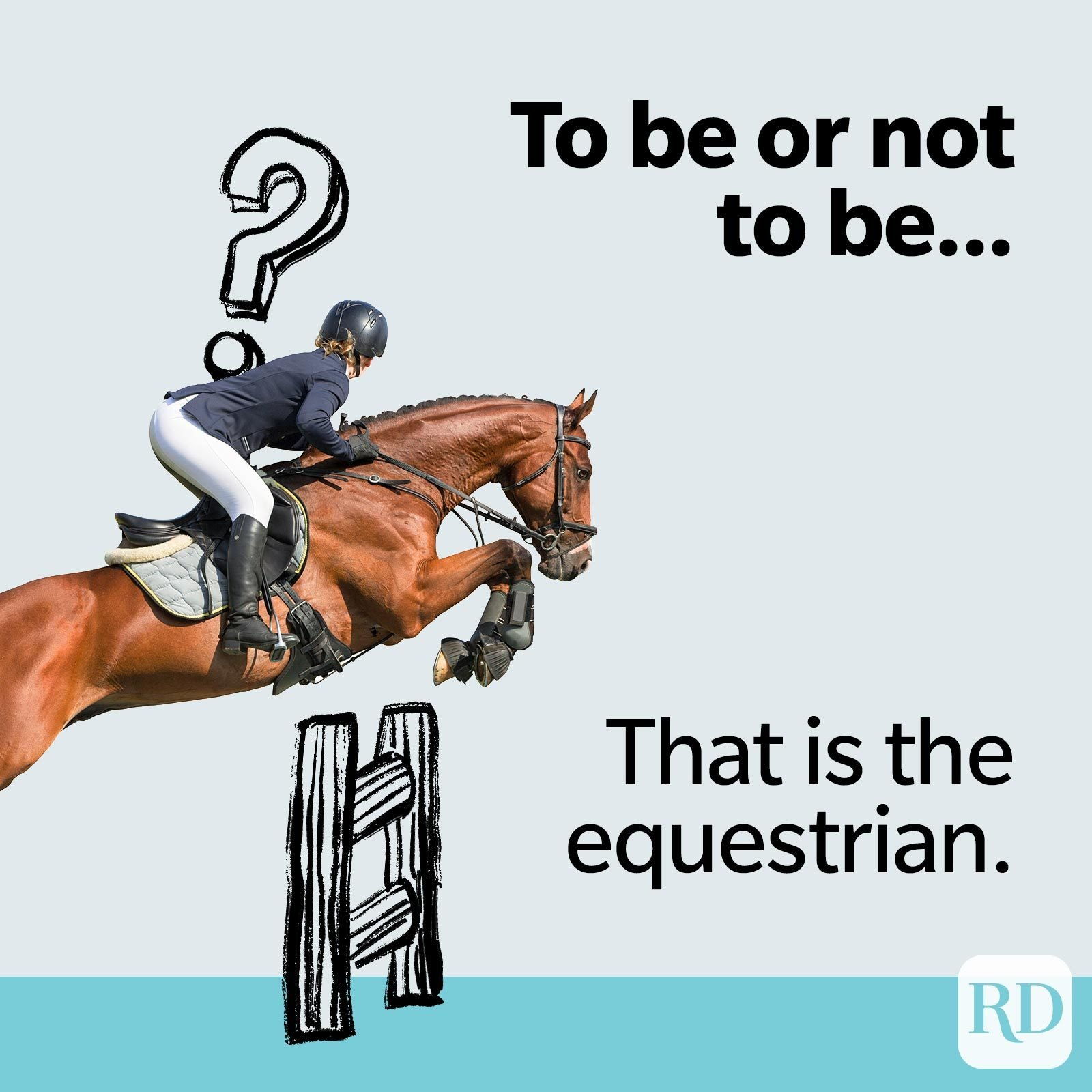 TO be or not to be... that is the equestrian.