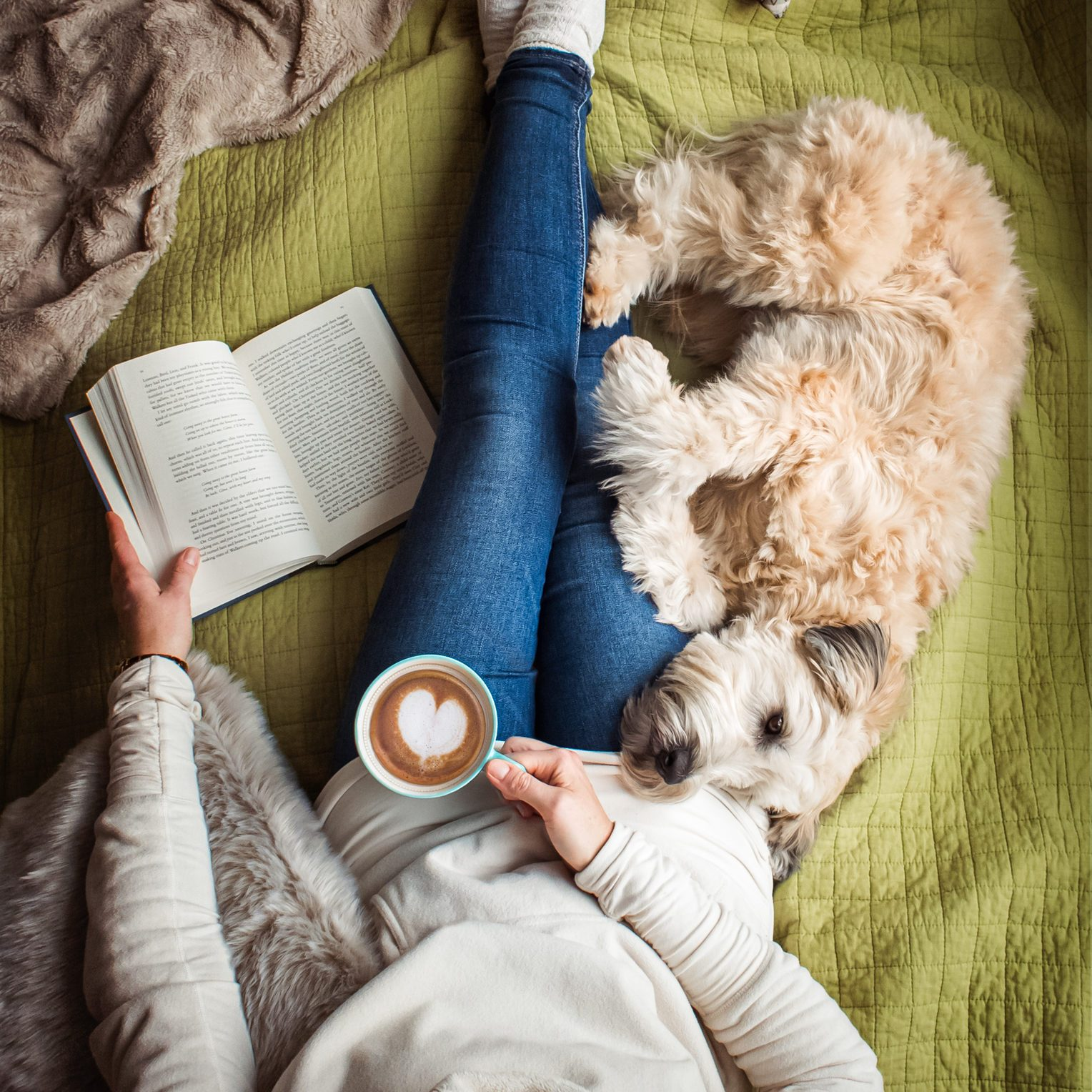 Overhead view of woman's torso on a bed with a book, coffee and a dog.