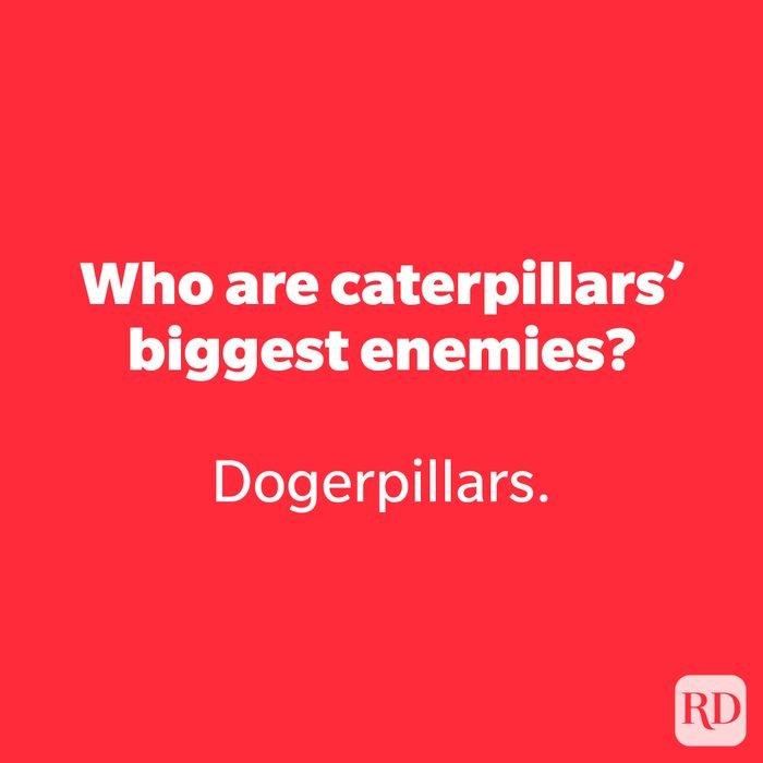 Who are caterpillars' biggest enemies?
