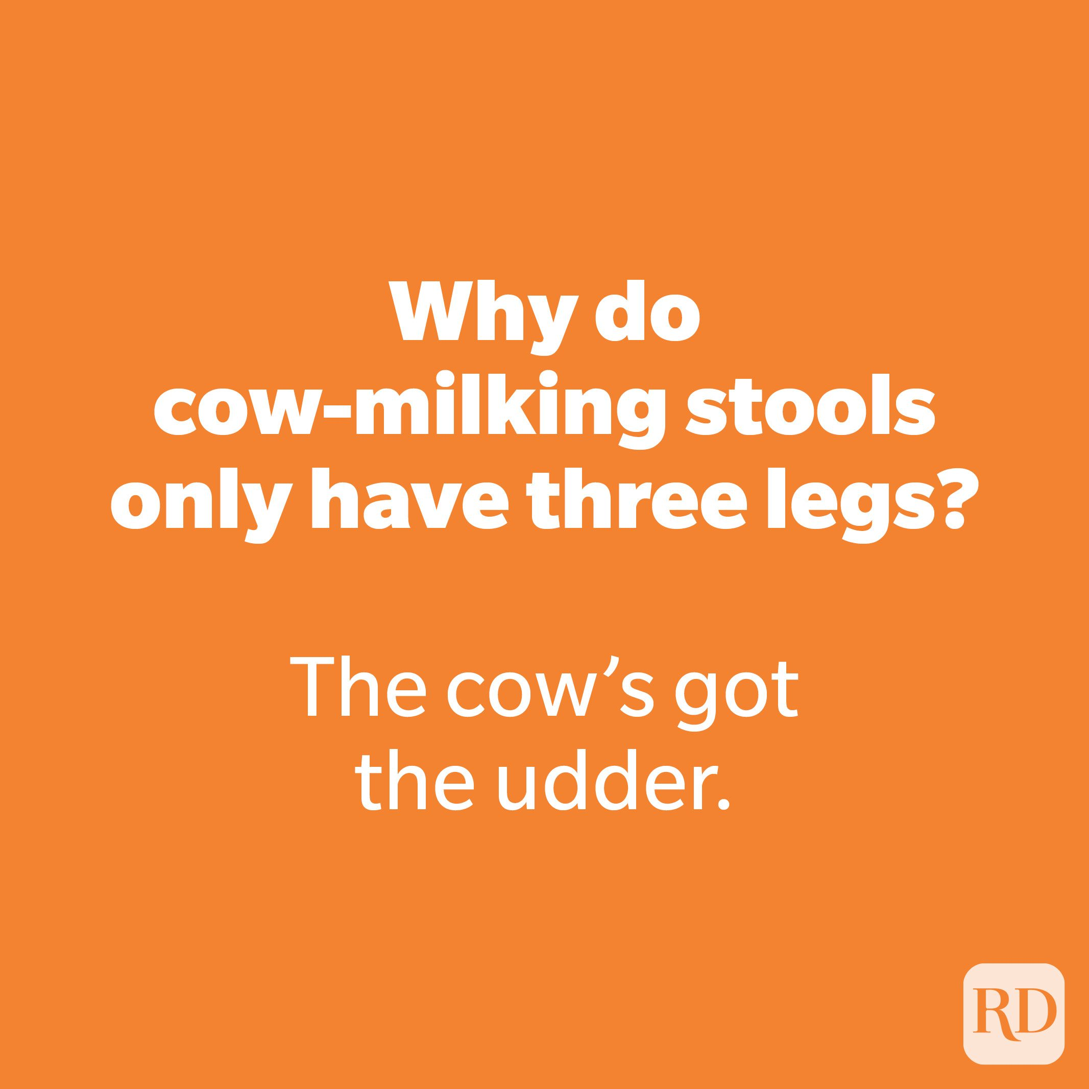 Why do cow-milking stools only have three legs?