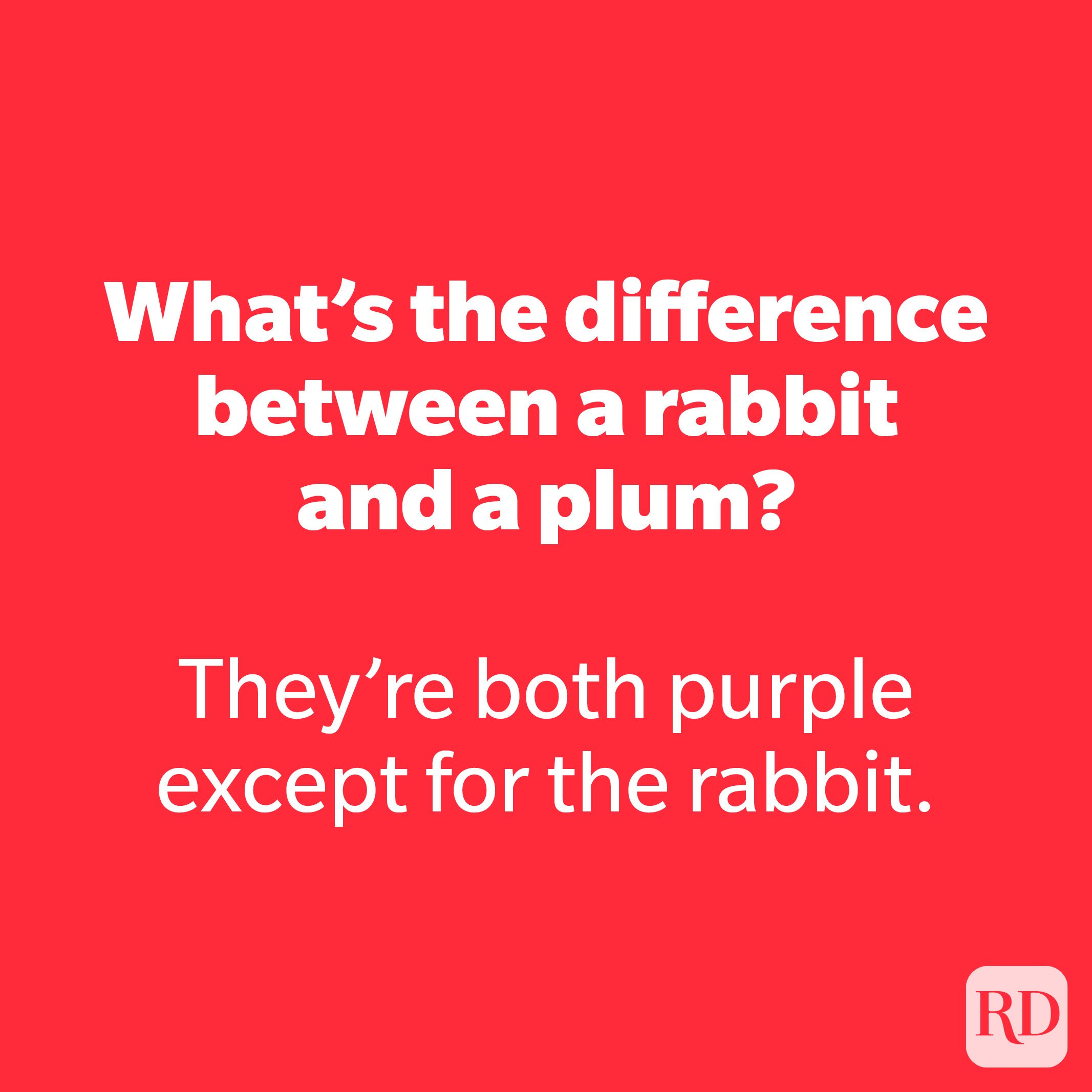 What's the difference between a rabbit and a plum? 14