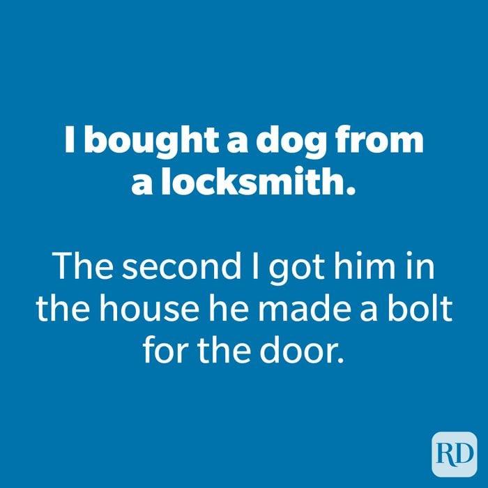 I bought a dog from a locksmith.