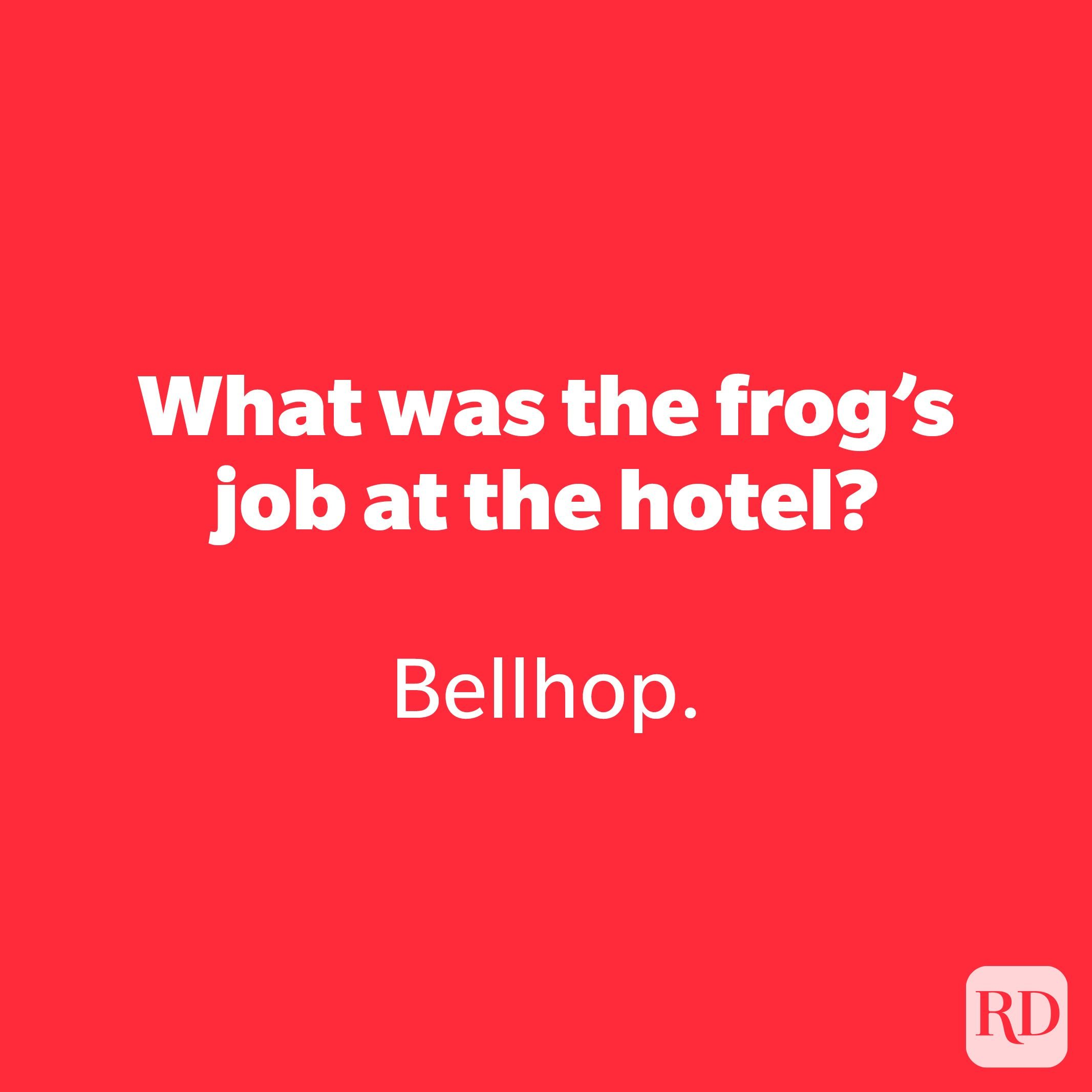 What was the frog's job at the hotel?