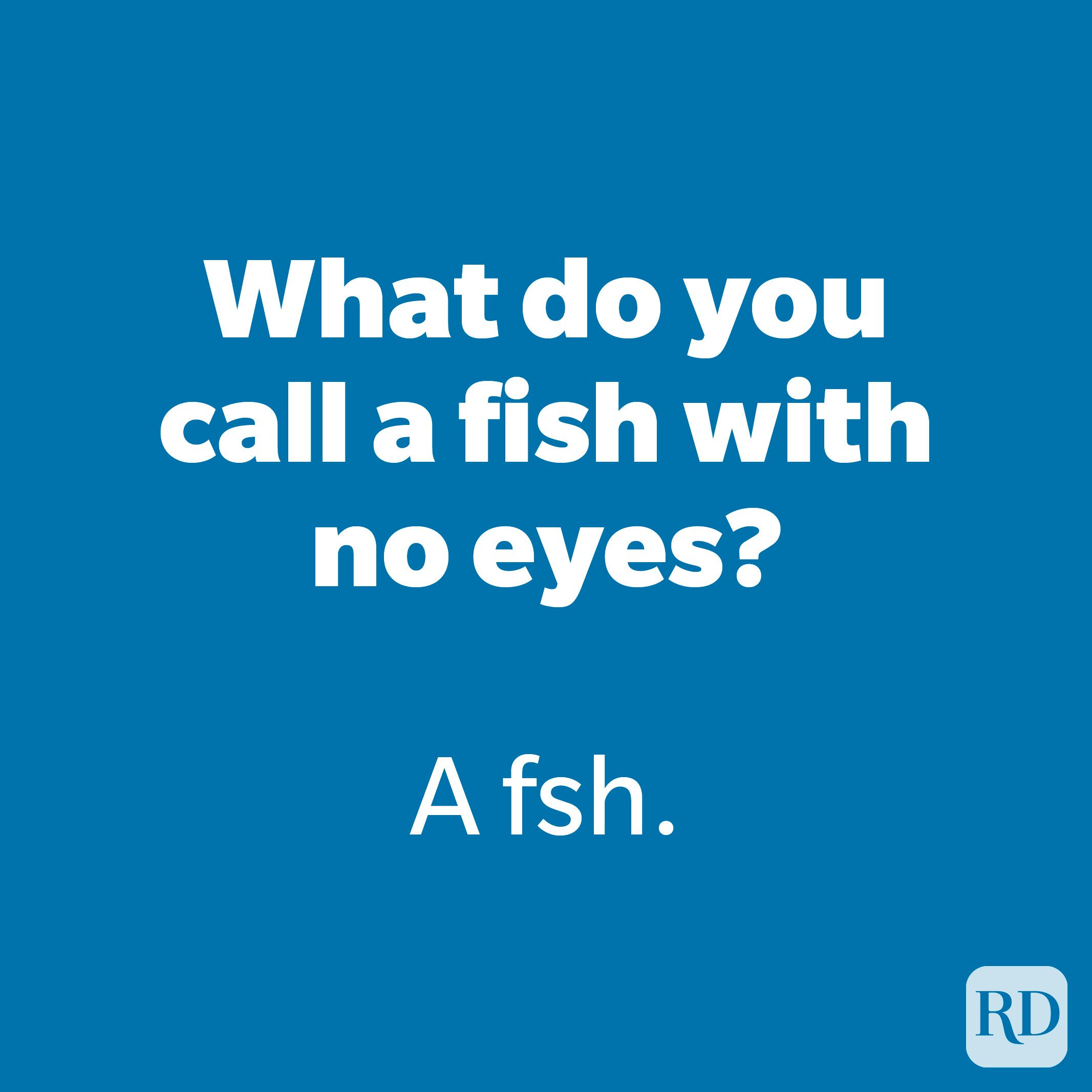 What do you call a fish with no eyes?