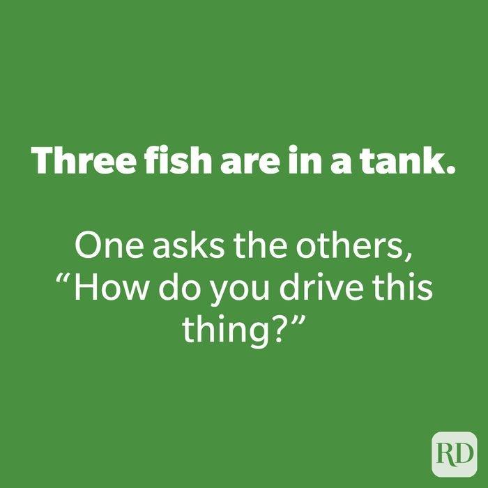 Three fish are in a tank.