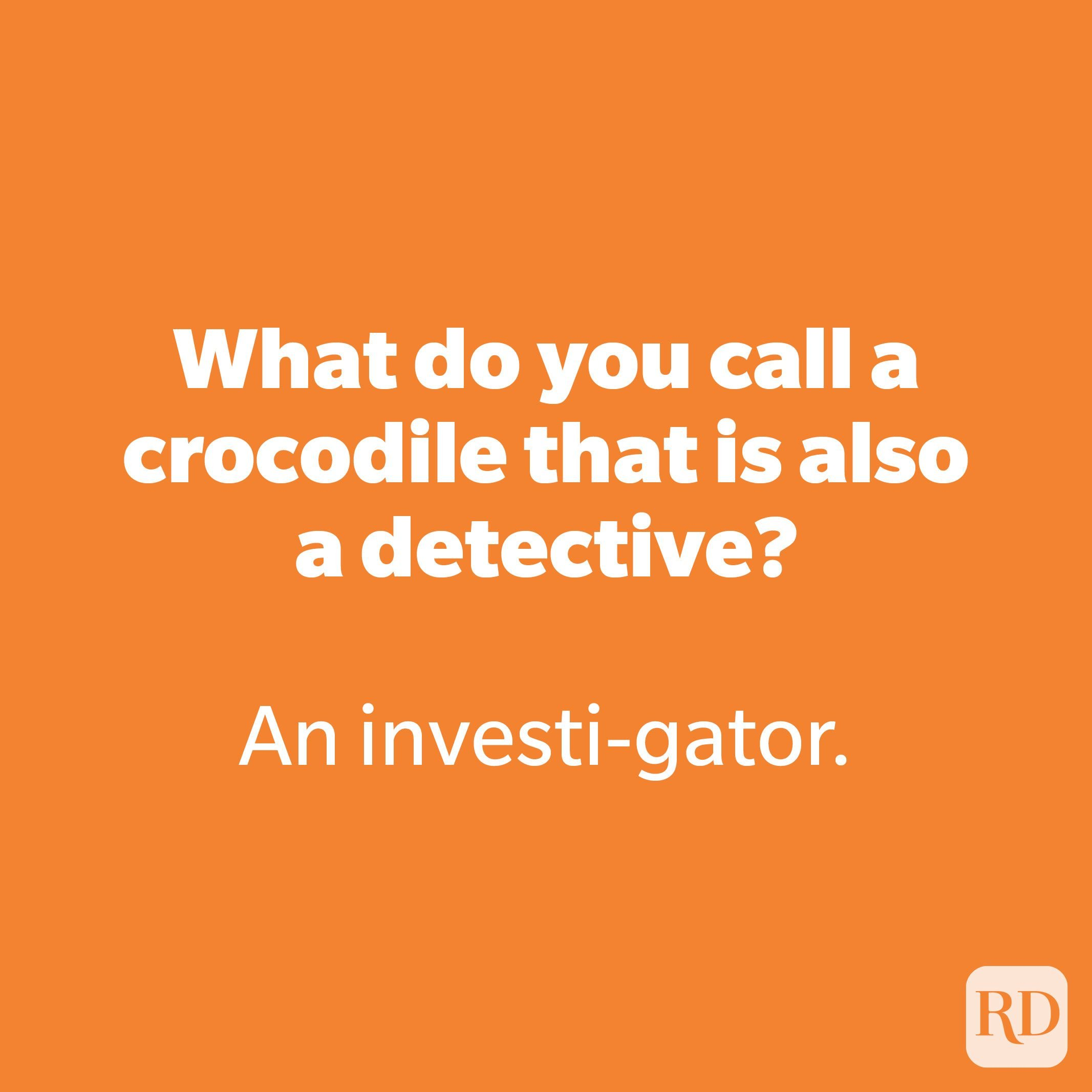 What do you call a crocodile that is also a detective?