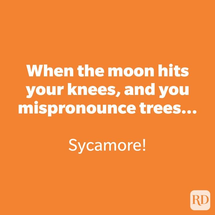 When the moon hits your knees, and you mispronounce trees