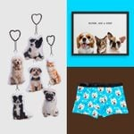 25 Best Personalized Pet Gifts for Dog and Cat Lovers