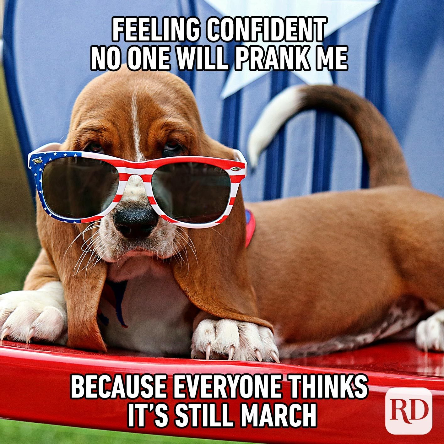 Dog with American flag glasses. Meme text: Feeling confident no one will prank me because everyone thinks it's still March