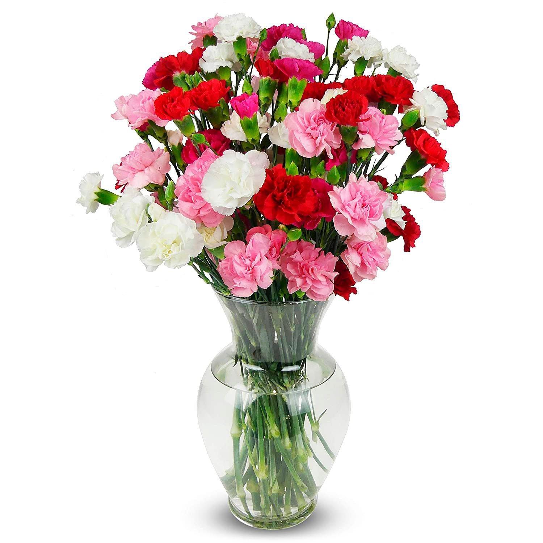 Benchmark Bouquets 20 Stem Rainbow Mini Carnations With Vase