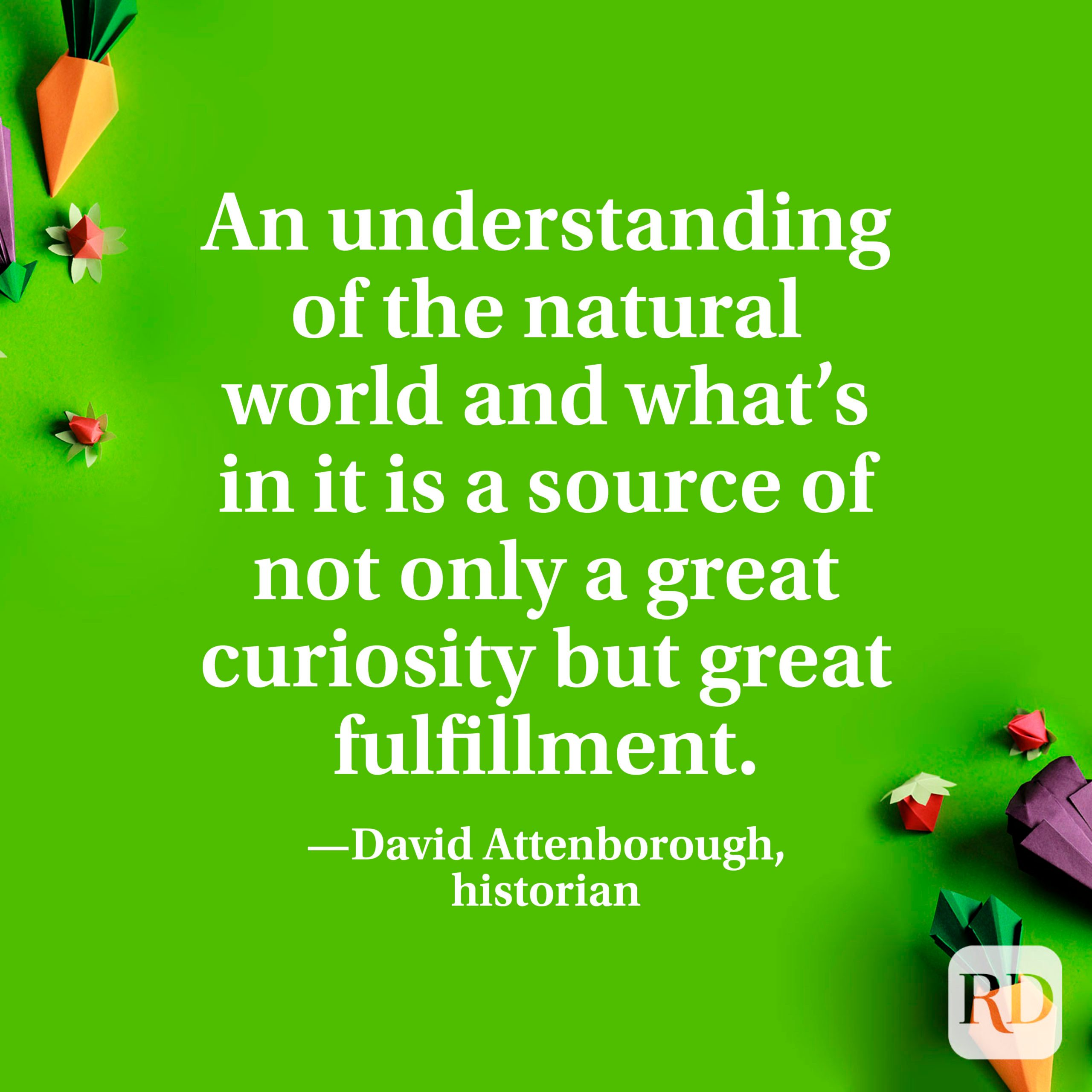 """""""An understanding of the natural world and what's in it is a source of not only a great curiosity but great fulfillment."""" —David Attenborough, historian."""