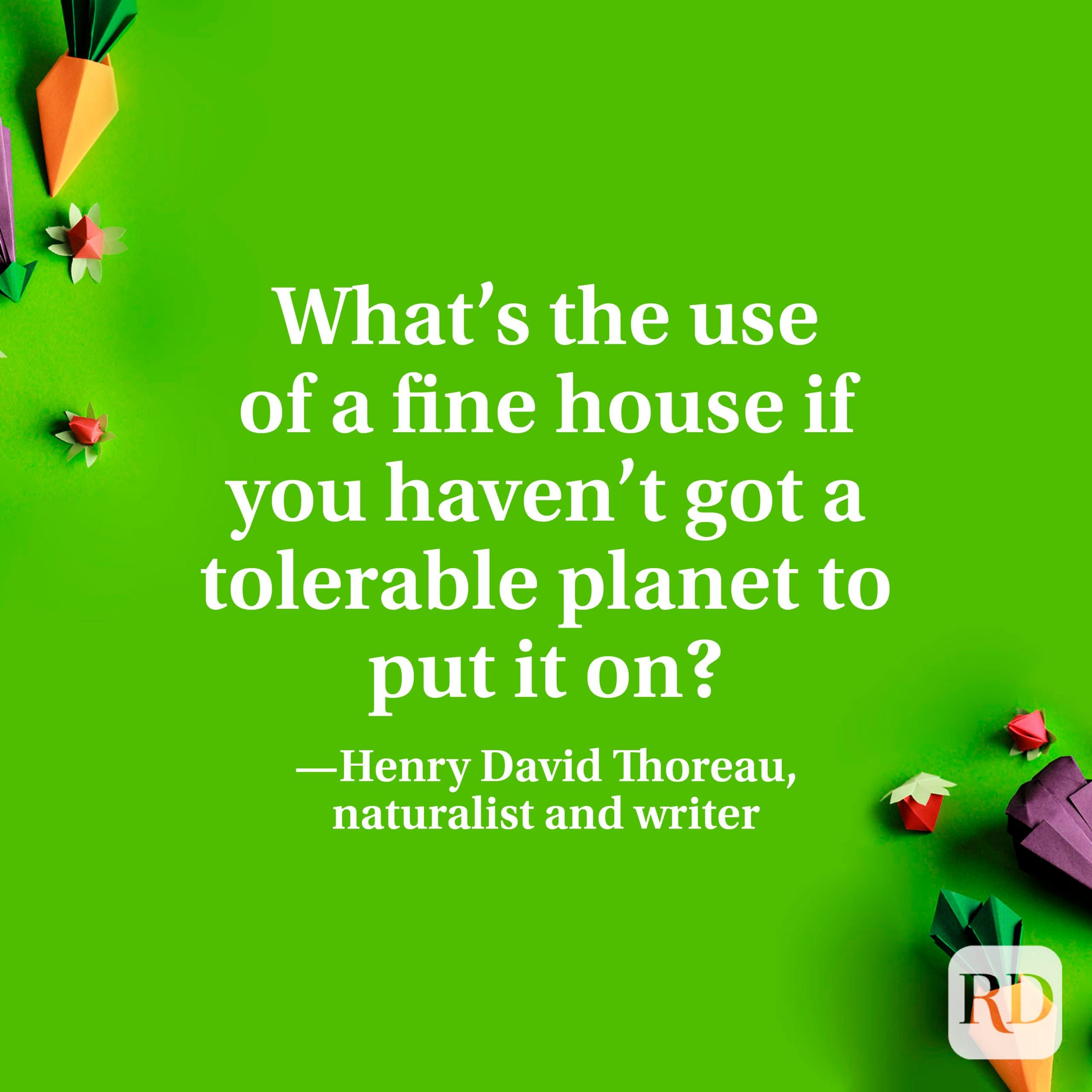 """""""What's the use of a fine house if you haven't got a tolerable planet to put it on?"""" —Henry David Thoreau, naturalist and writer"""