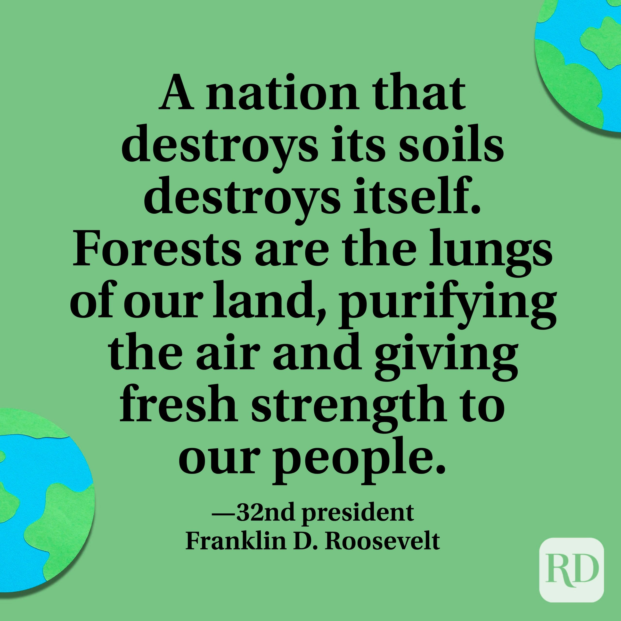 """""""A nation that destroys its soils destroys itself. Forests are the lungs of our land, purifying the air and giving fresh strength to our people."""" —32nd president Franklin D. Roosevelt."""