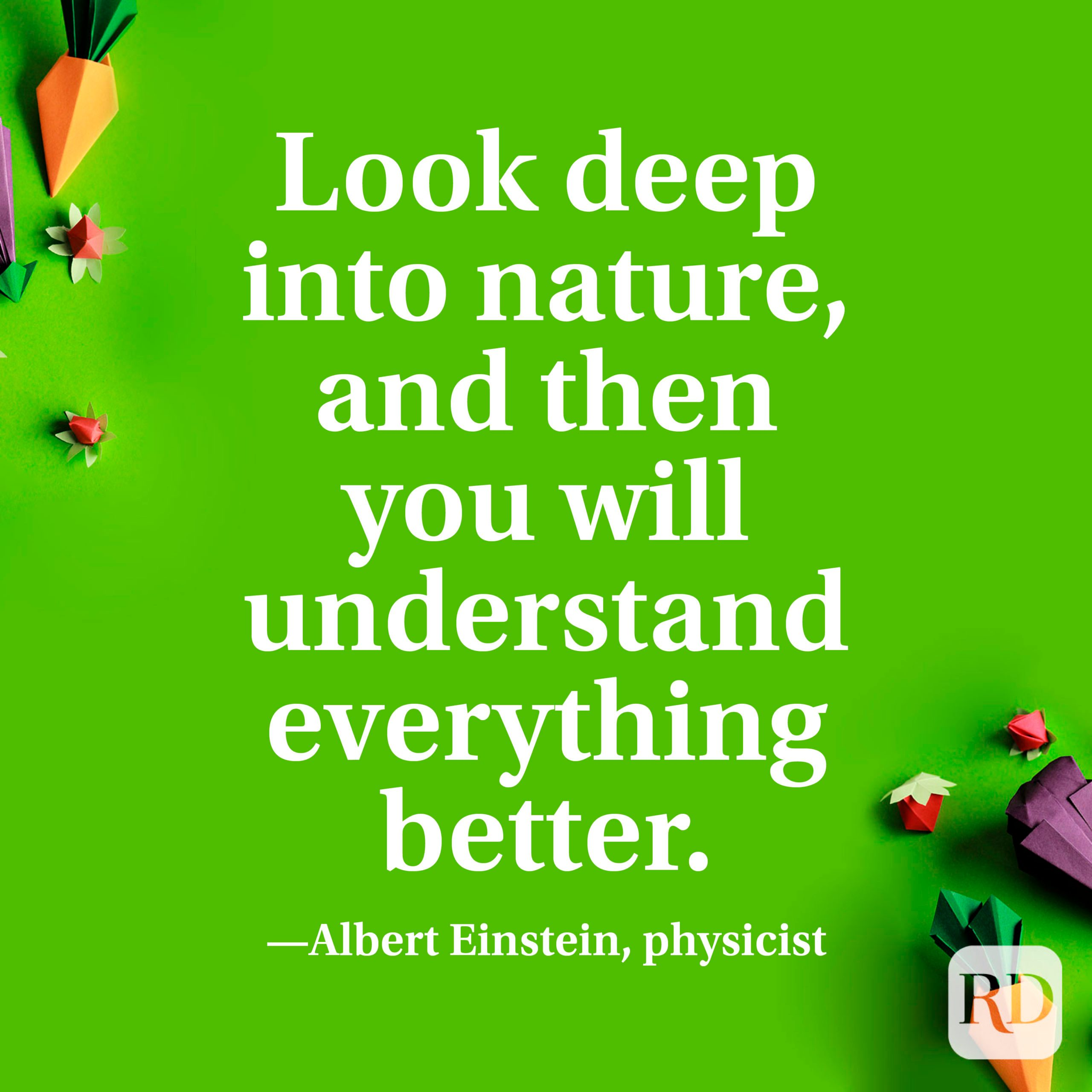 """""""Look deep into nature, and then you will understand everything better."""" —Albert Einstein, physicist"""
