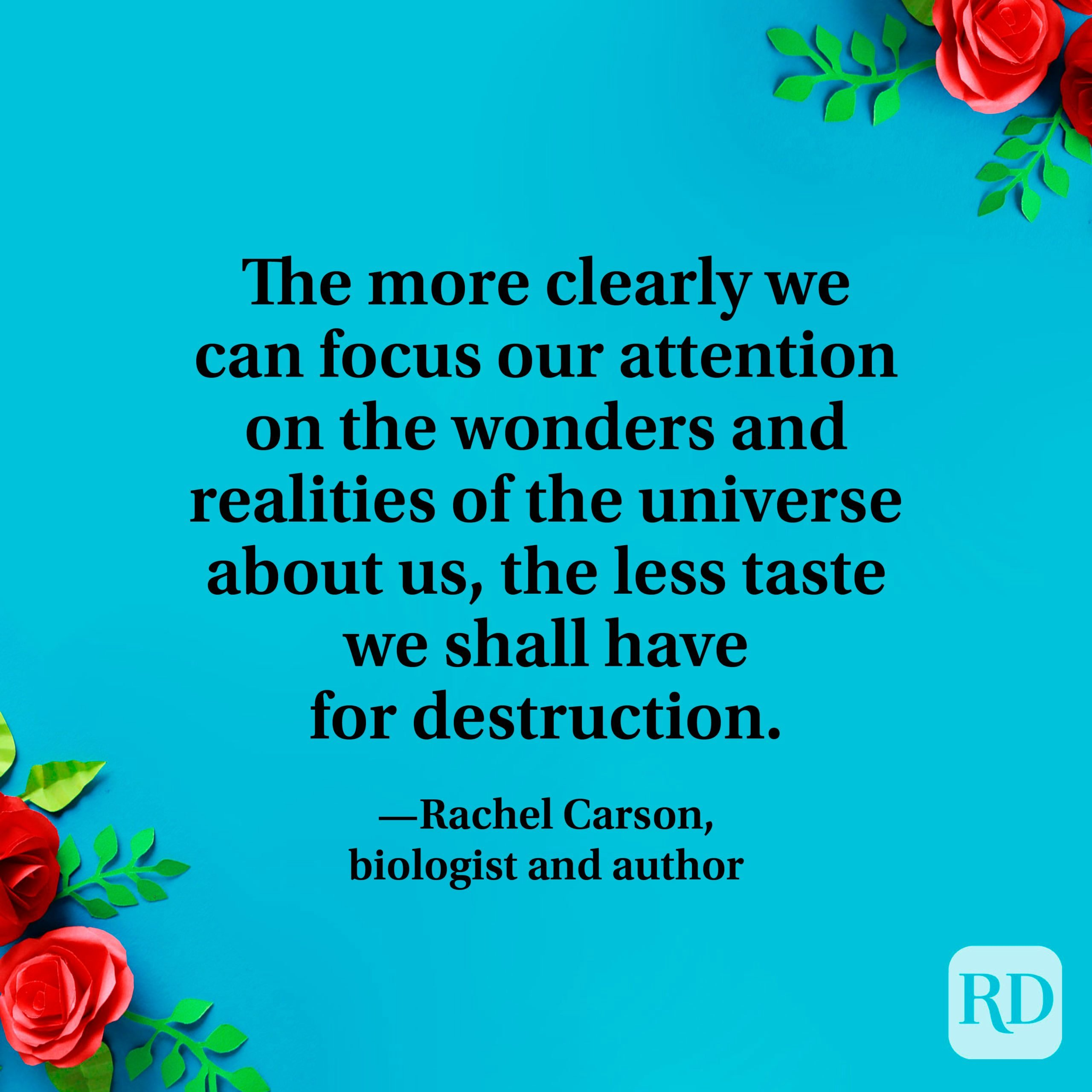 """""""The more clearly we can focus our attention on the wonders and realities of the universe about us, the less taste we shall have for destruction."""" —Rachel Carson, biologist and author"""