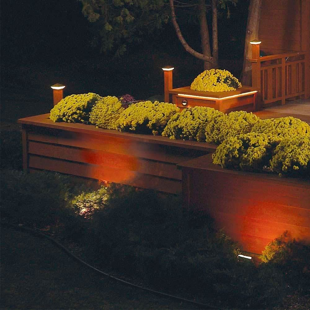 outdoor landscaping lit up at night