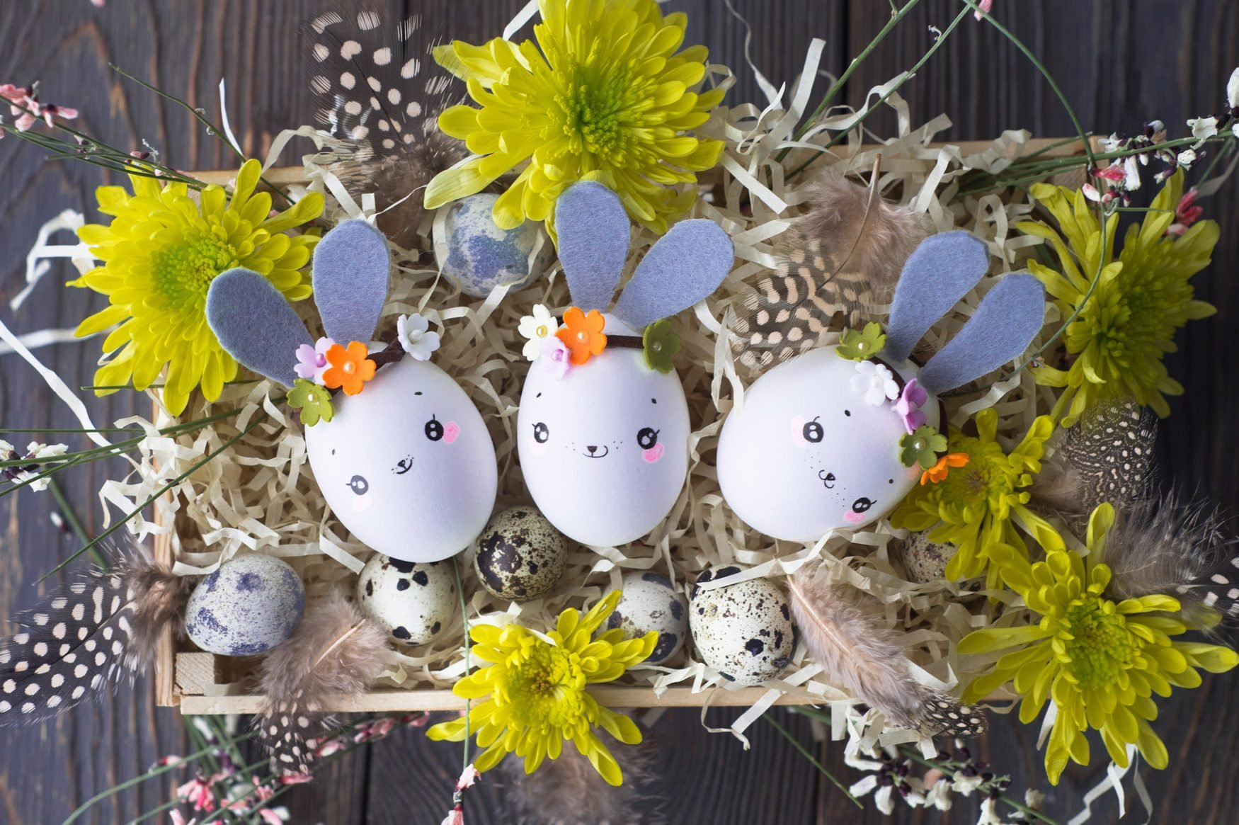 Easter Background, Homemade Eggshell Bunnies And Yellow Chrysant
