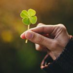 Why Four-Leaf Clovers Are Considered Lucky