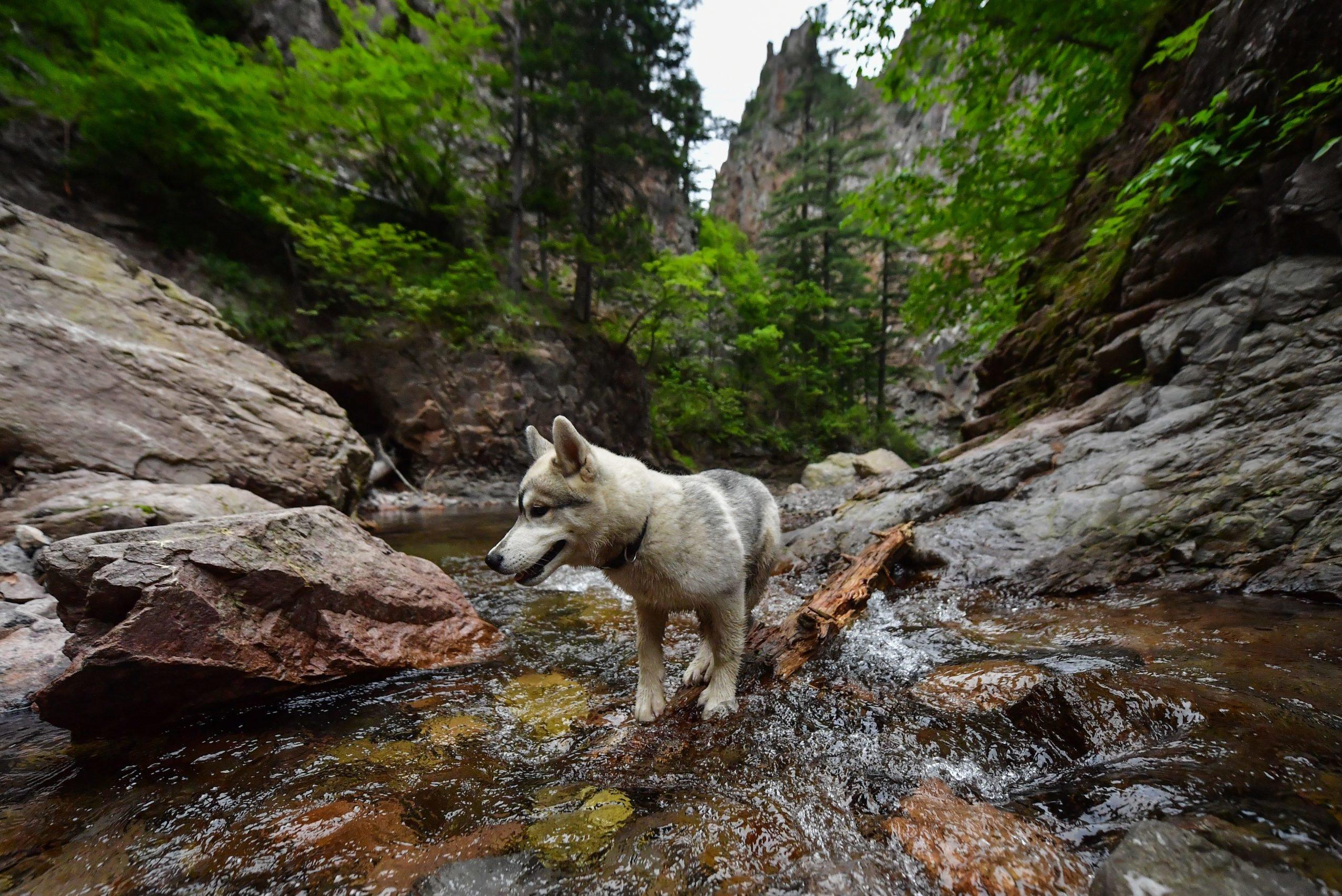 Black Shaman Falls in Russia's Primorye Territory