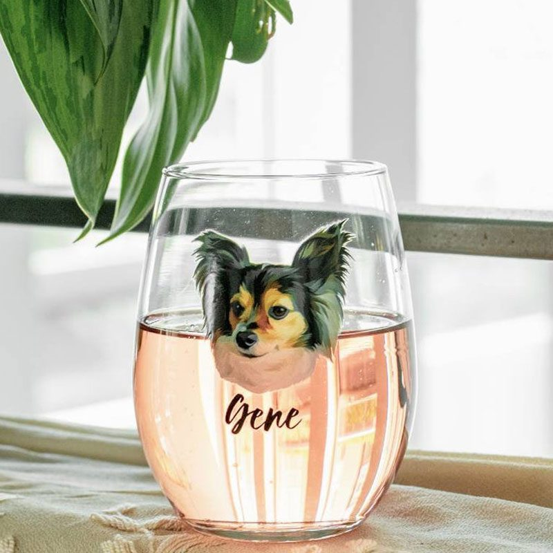 Cutsom Pet Stemless Wine Glass Set