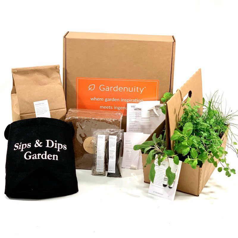 Sips And Dips Garden Kti With Plants