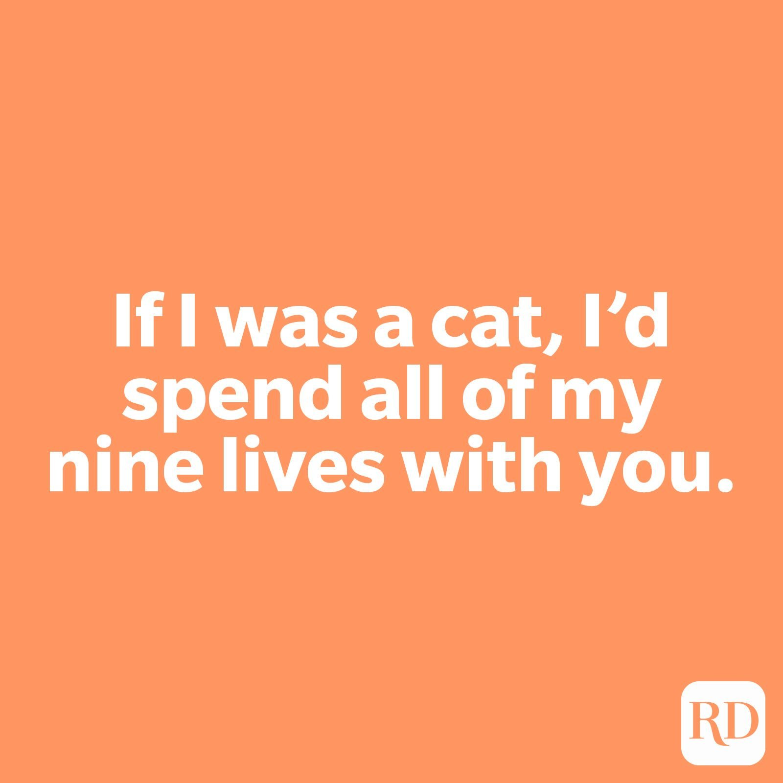 If I was a cat, I'd spend all of my nine lives with you.