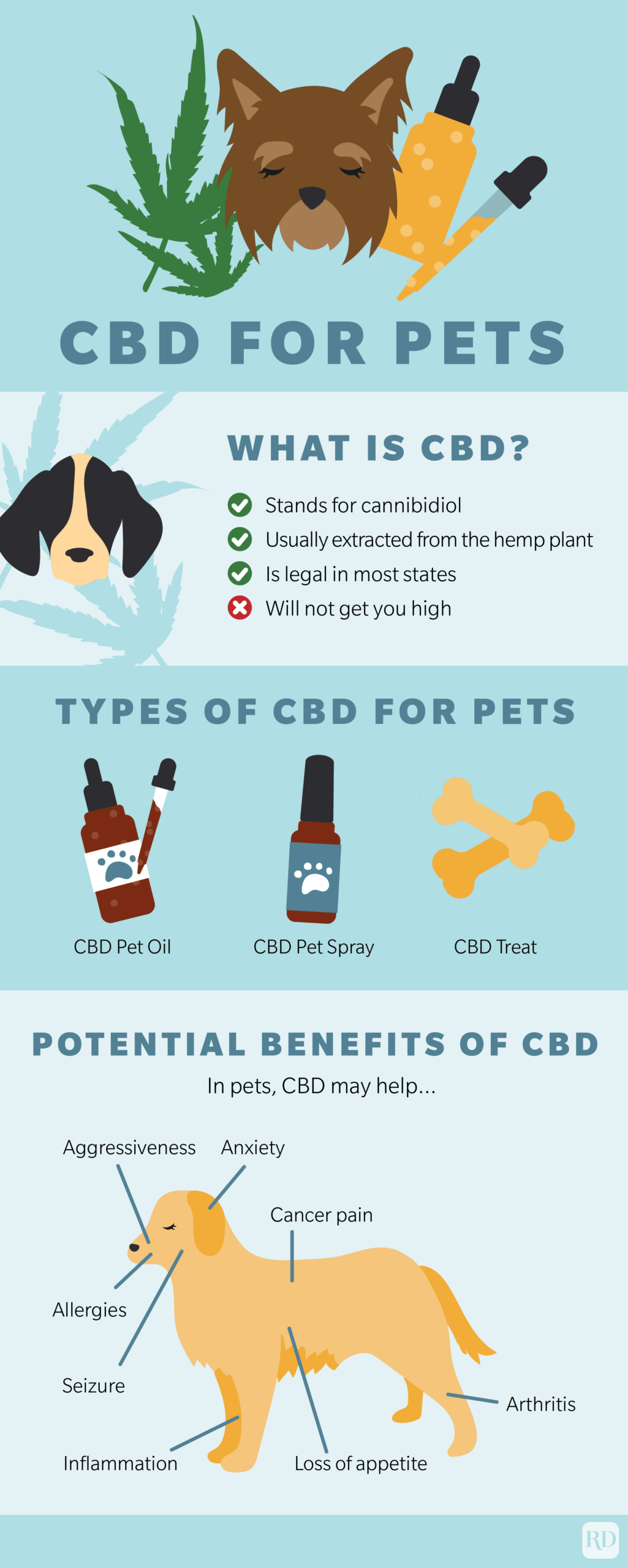 Cbd for Pets Infographic with sections about What is CBD?, Types of CBD for Pets, and Potential Benefits of CBD