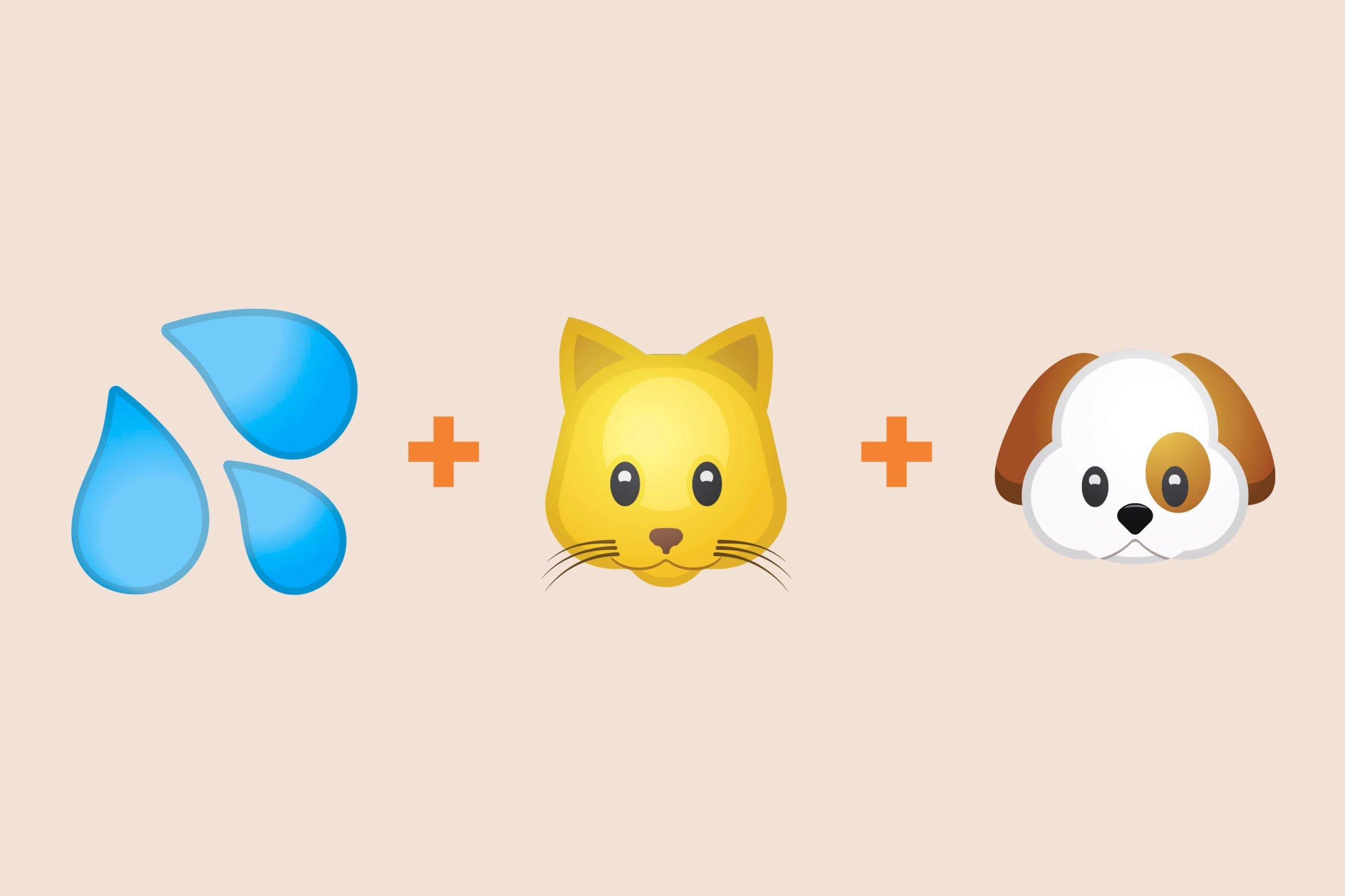 Rain emoji + cat emoji + dog emoji