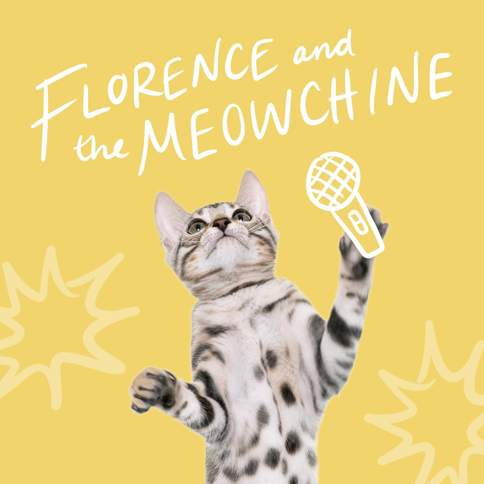 Cat holding a microphone called Florence and the Meow-chine