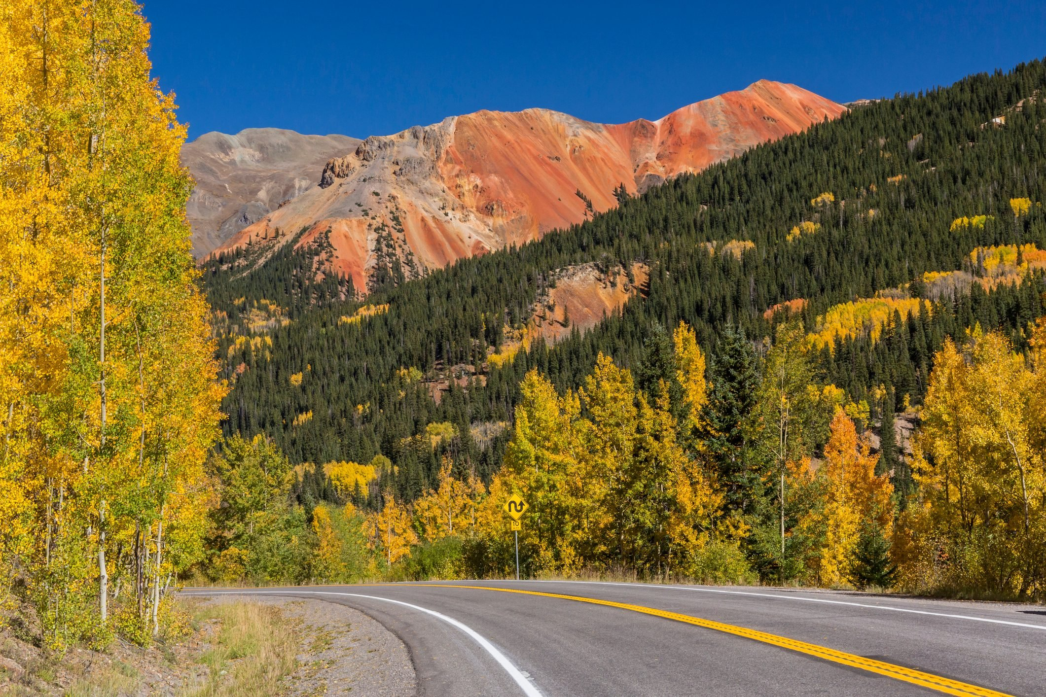 Golden aspens on Red Mountain Pass on the Million Dollar Highway in the Uncompahgre National Forest, Colorado