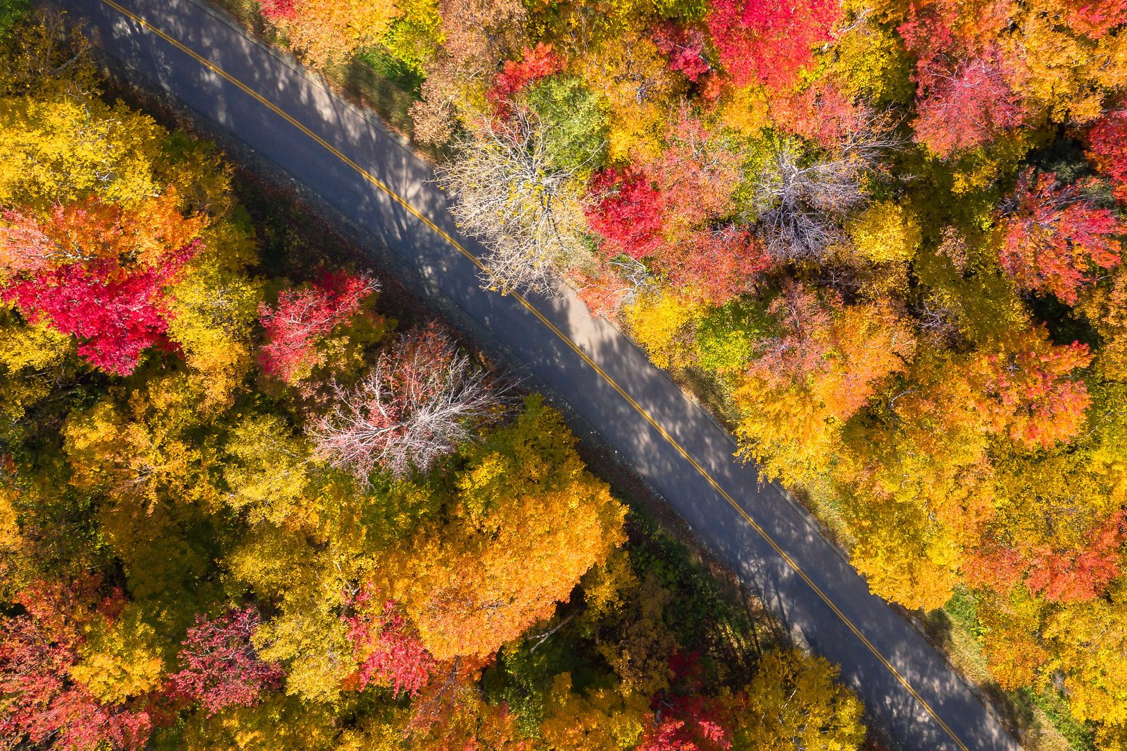 Aerial view of a road through White Mountain National forest, Lincoln, New Hampshire, USA