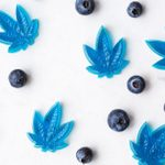 Everything You Need to Know About CBD Gummies