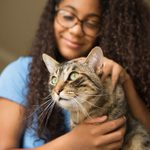 Here's How to Train a Cat to Do 5 Life-Changing Things