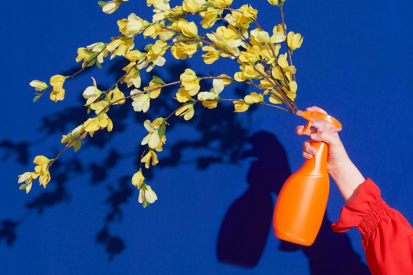 spray bottle with flowers coming out