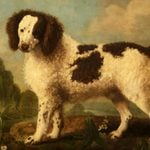 8 Extinct Dog Breeds You Won't Believe Actually Existed